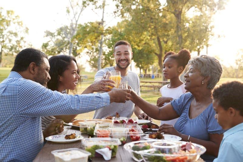 Den mång- utvecklingsfamiljen som tycker om picknicken parkerar in, tillsammans royaltyfria bilder