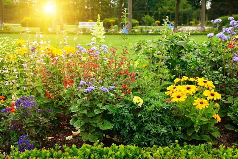 Den mångfärgade blomsterrabatten parkerar in royaltyfri bild
