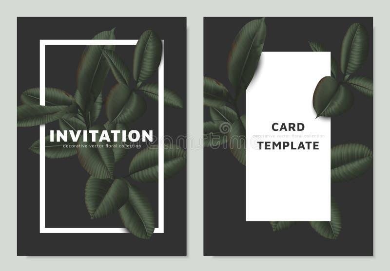 Den mörka matte gröna fikus Elastica lämnar med den vita ramen på mörk bakgrund, inbjudankortmall royaltyfri illustrationer