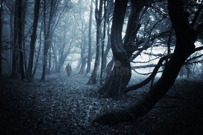 Den mörka platsen av en spöklik man som går i en mörk skog med blått, fördunklar royaltyfri fotografi