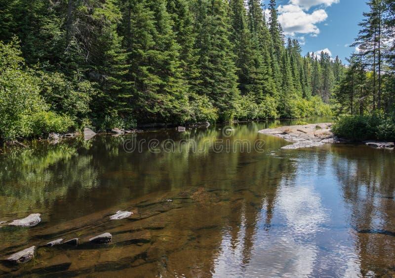 Den Madawaska floden i Algonquin parkerar Ontario arkivfoton