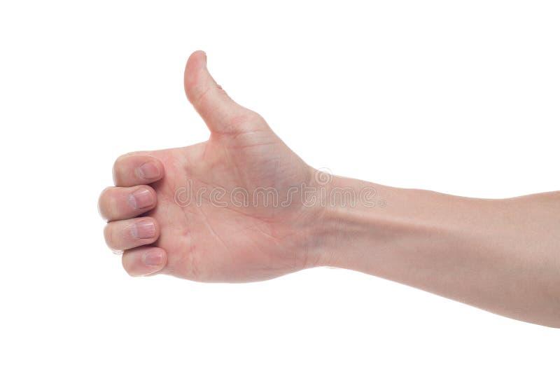 Den manliga handen p? en vit bakgrund visar som kopiera avst?nd royaltyfri fotografi