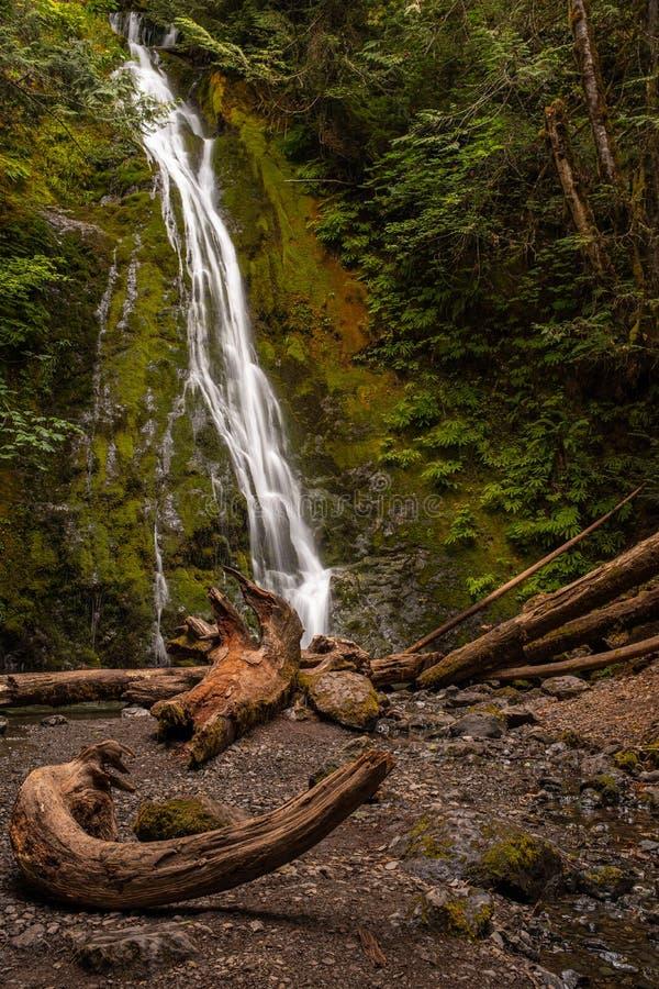 Den Marymere vattenfallet i den olympiska nationalparken, Washington State, USA, på en lång exponering som tillfogar suddig rörel arkivbild