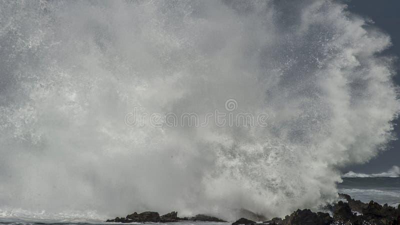 Den massiva vågen Brkes vaggar på arkivbild
