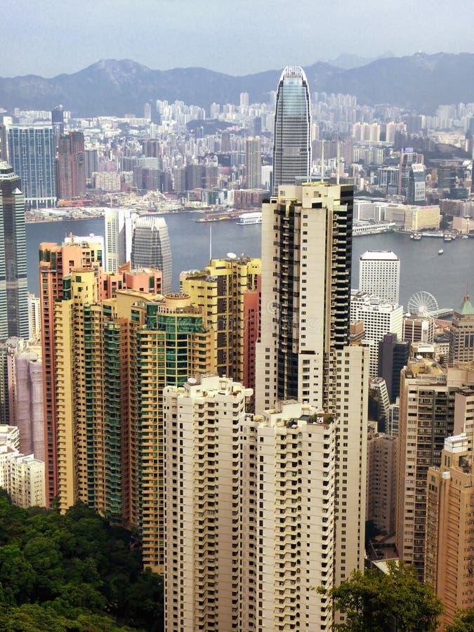 Den maximala Hong Kong sikten royaltyfri fotografi
