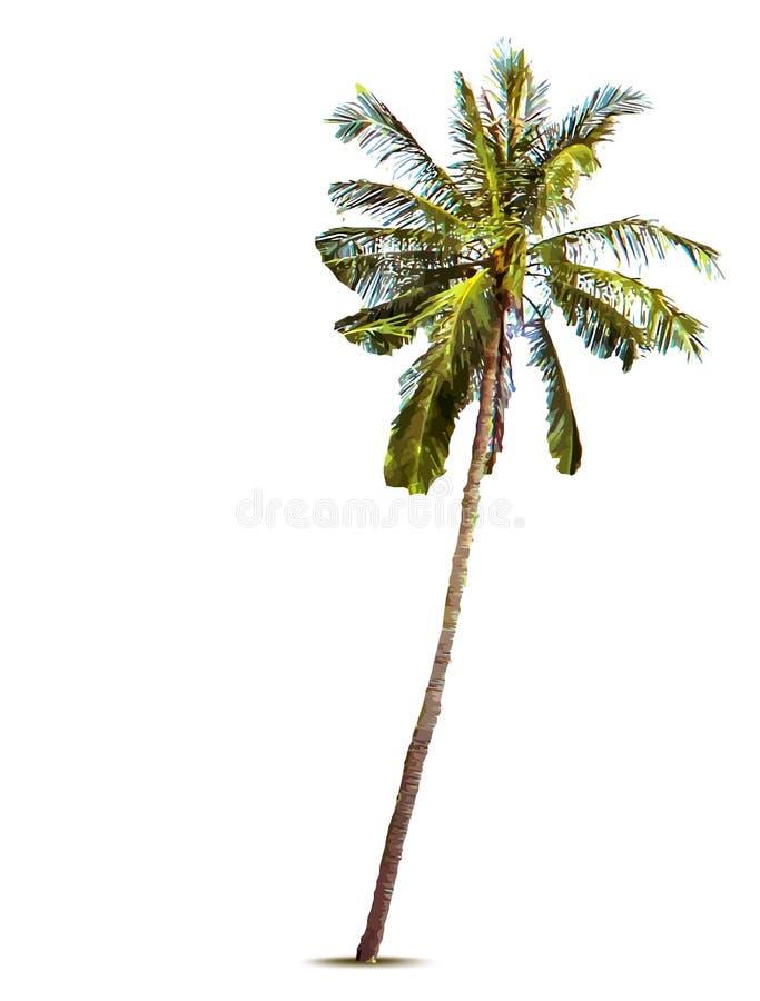 den medelhavs- corsica ön gömma i handflatan den fotografi tagna treen också vektor för coreldrawillustration royaltyfri illustrationer