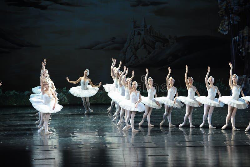 Den mest härliga vita svan-balett svan sjön royaltyfri foto