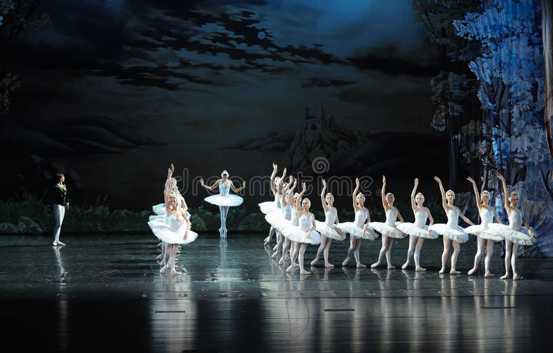 Den mest härliga vita svan-balett svan sjön fotografering för bildbyråer