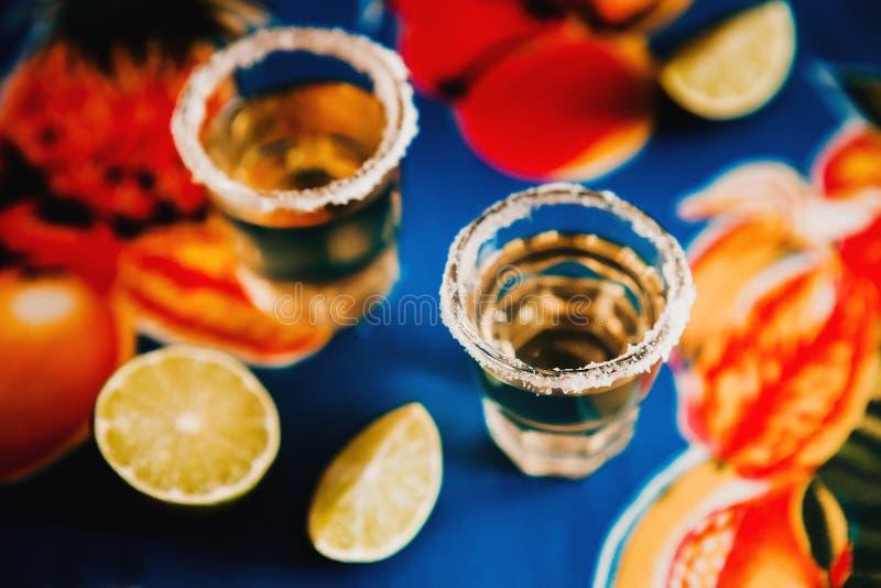 Den mexicanska tequilaen sköt med limefrukt och saltar i Mexico royaltyfri bild