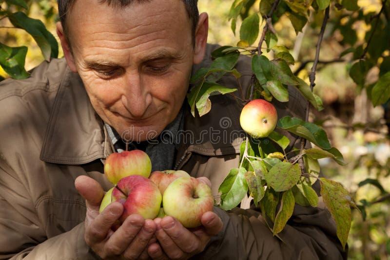den middleaged mannen för äpplehandhållen luktar dem royaltyfri fotografi