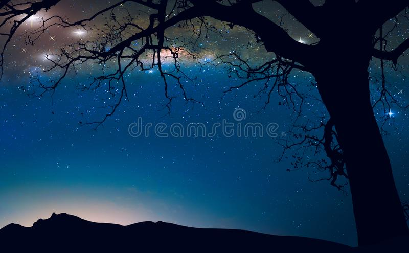 Den mjölkaktiga vägen i natthimlen och det döda trädet, fantasilandskap royaltyfri fotografi