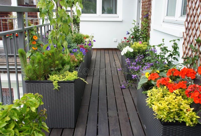 Den moderna härliga terrassen med en radda blommar arkivfoto
