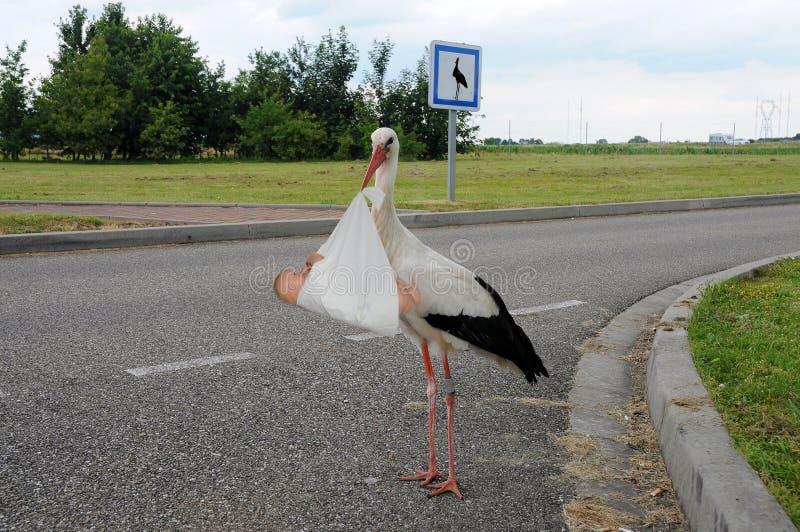 Den moderna storken, kommer med han behandla som ett barn till parkeringsområdet royaltyfri fotografi