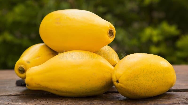 Den mogna papayaen, bär frukt sunt arkivfoton