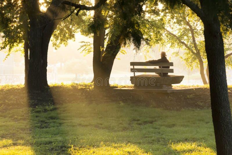 Den mogna vuxna mannen sitter på parkerar hänsynsfullt bänken i nedgång arkivfoton
