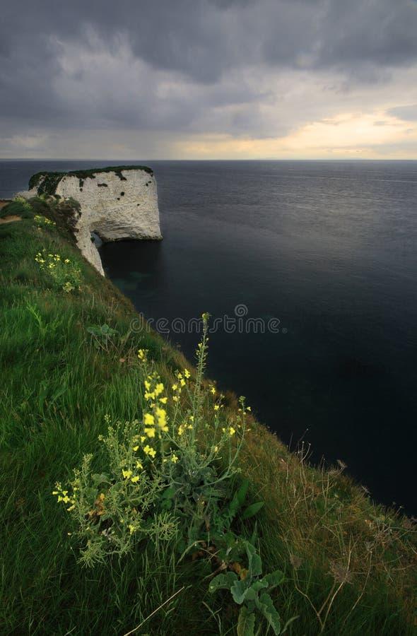 den molniga kusten dorset harry den gammala rockssolnedgången uk arkivbild