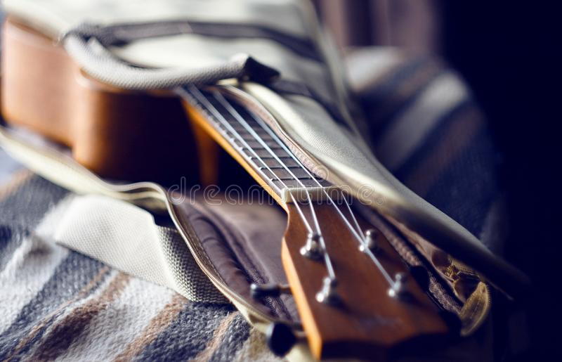 Den musikaliska stringed instrument-ukulelet är i ett öppet bärande fall fotografering för bildbyråer