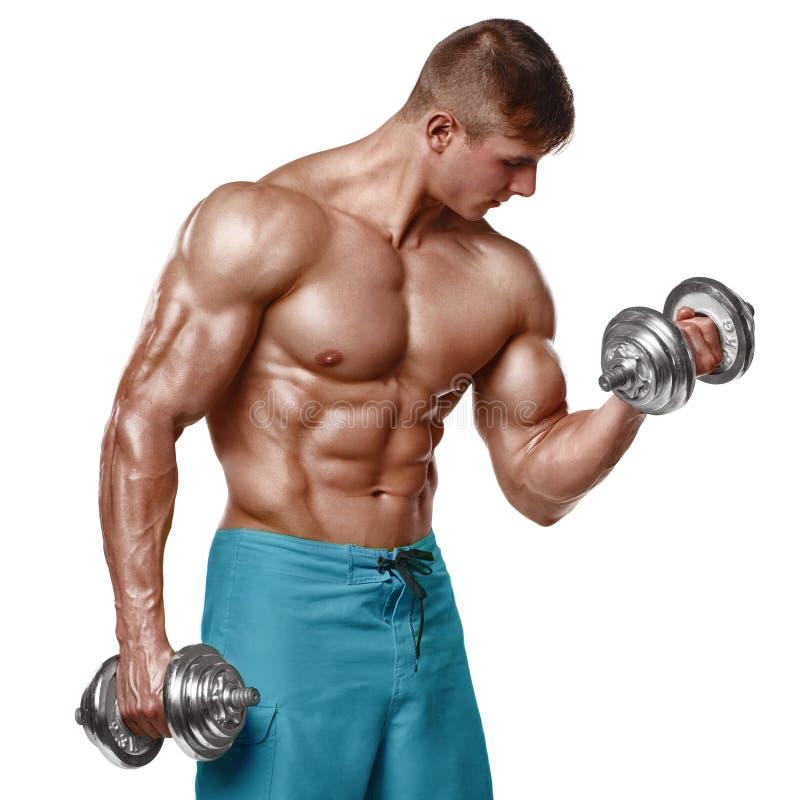 Den muskulösa mannen som utarbetar att göra, övar med hantlar på biceps, stark manlig naken torsoabs som isoleras över vit bakgru royaltyfria bilder