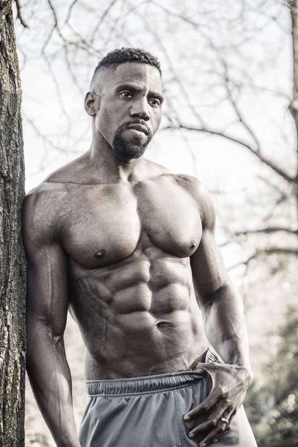 Den muskulösa Shirtless svarta mannen parkerar in fotografering för bildbyråer
