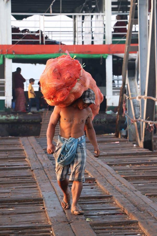 Den Myanmese arbetaren b?r den stora p?sekokosn?ten lands?tter fr?n skeppet och g?r f?rbi bron av hamnen p? den Yangon floden royaltyfri foto