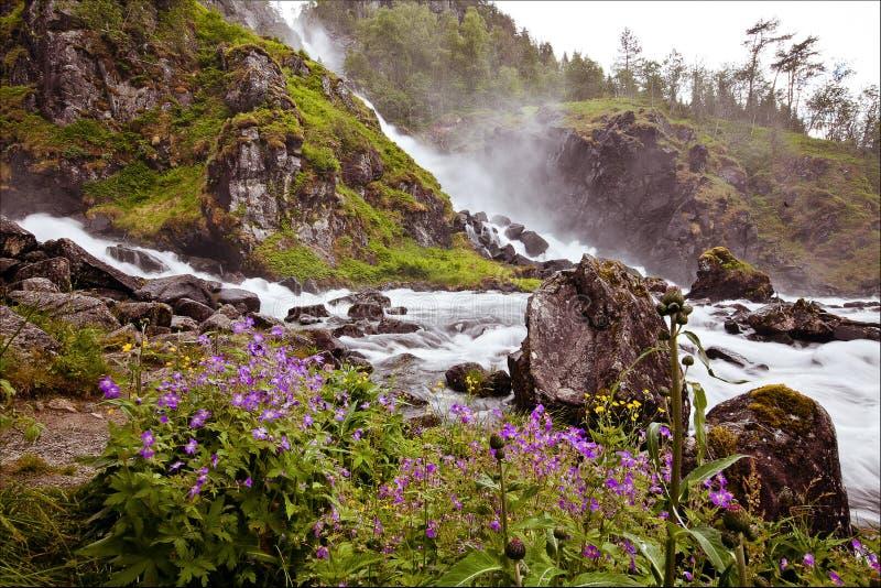 Den mycket härliga vattenfallet i Norge med snabb-flödande vatten, vaggar royaltyfria foton