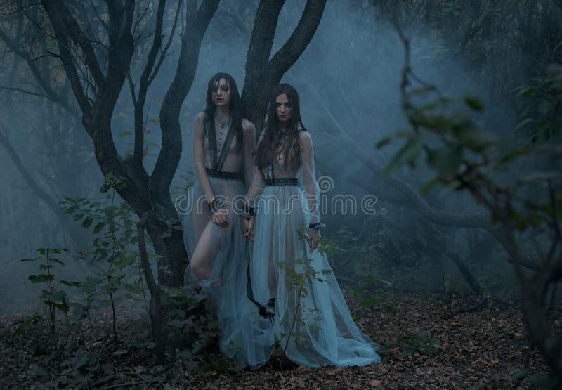Den mystiska damen med långt svart hår går i de spöklika träna royaltyfri foto