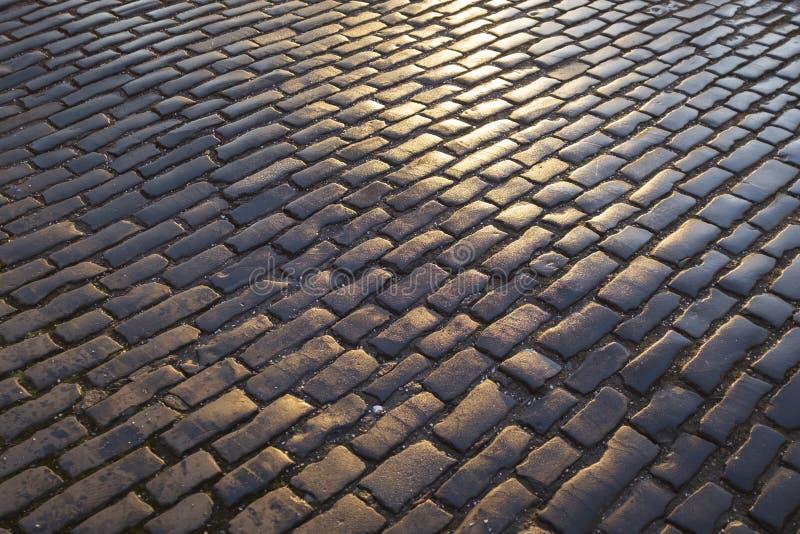 Den nära övre sikten av den våta, mörka och solbelysta kullersten stenlade gatan, Edinburg royaltyfria bilder
