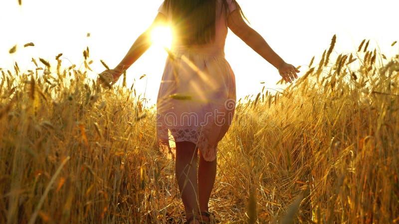 Den nätta flickan i klänningen stöter ihop med fältet arkivfoto