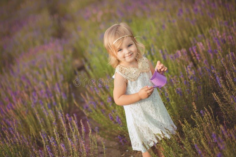 Den nätta gulliga lilla flickan bär den vita klänningen i ett lavendelfält som rymmer en korg full av purpurfärgade blommor fotografering för bildbyråer