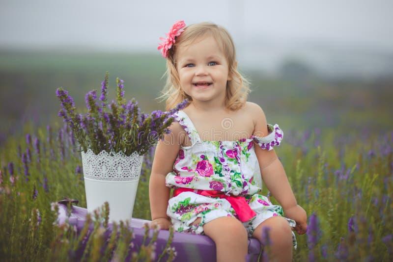 Den nätta gulliga lilla flickan bär den vita klänningen i ett lavendelfält som rymmer en korg full av purpurfärgade blommor arkivbild