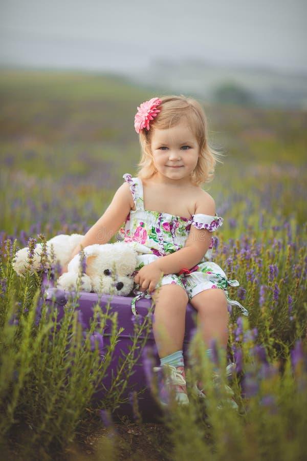 Den nätta gulliga lilla flickan bär den vita klänningen i ett lavendelfält som rymmer en korg full av purpurfärgade blommor royaltyfri fotografi