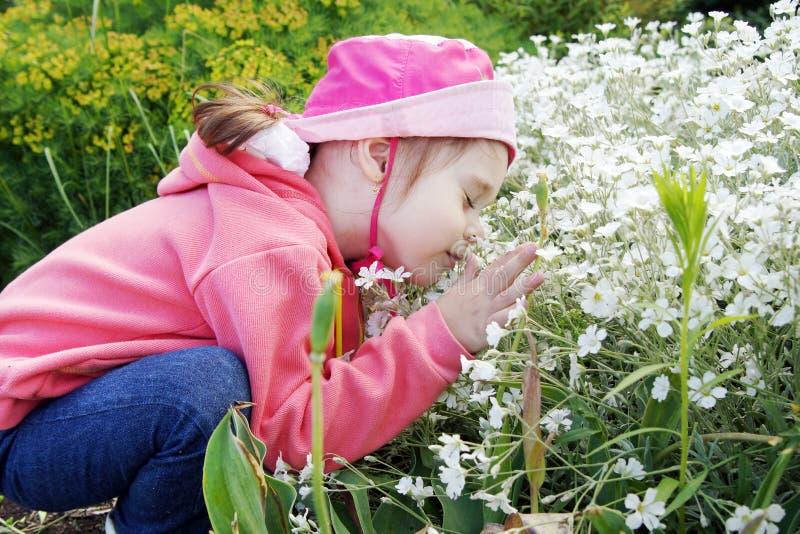 Den nätta lilla flickan i en trädgård sniffar blommor royaltyfria bilder