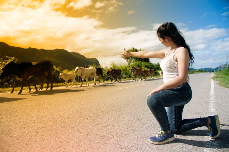 Den nätta unga asiatiska kvinnan tycker om sommardag med kon på en väg royaltyfria bilder