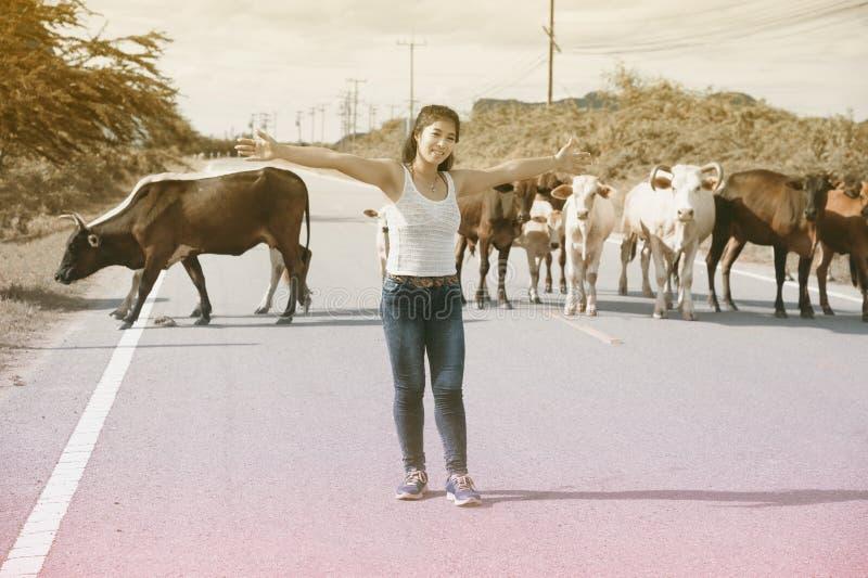 Den nätta unga asiatiska kvinnan tycker om sommardag med kon på en väg arkivbild