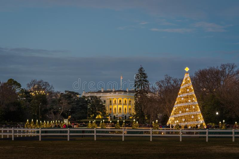 Den nationella julgranen och Vita Huset på natten, i Washington, DC fotografering för bildbyråer