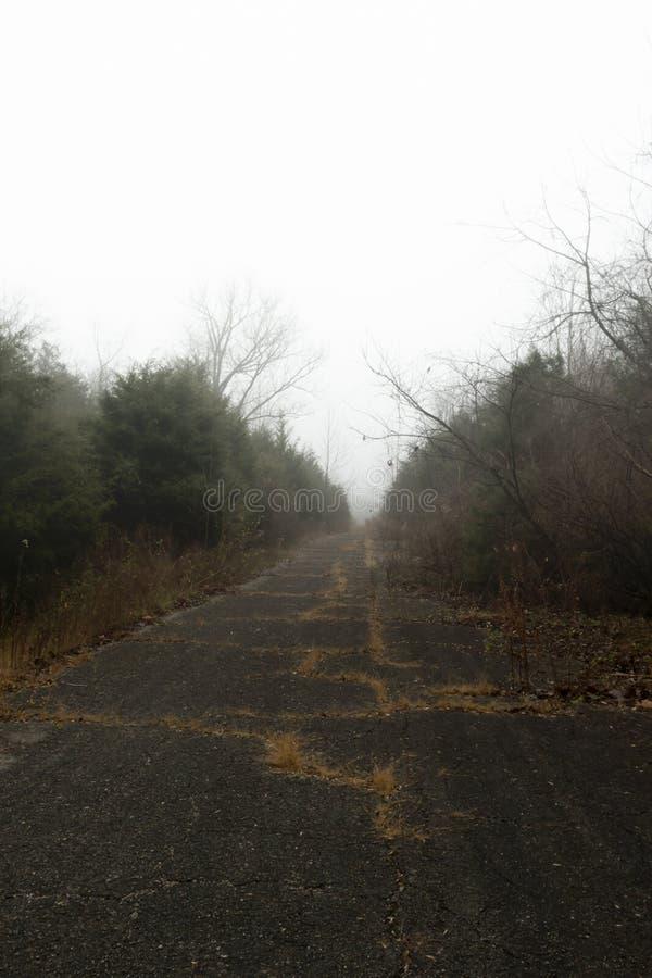 In den Nebel lizenzfreie stockbilder