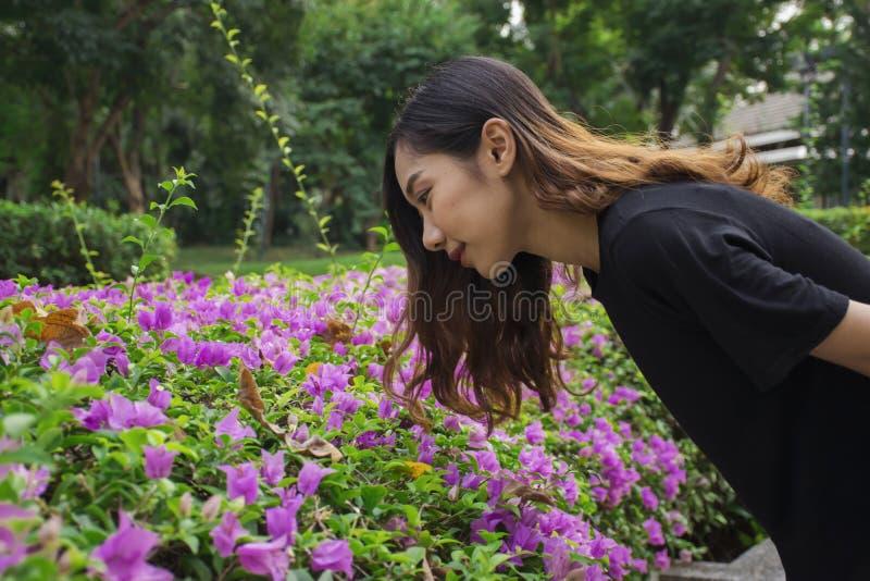 Den nedböjda asiatiska kvinnan att se den purpurfärgade blommabougainvillean med offentligt parkerar bakgrund royaltyfria foton