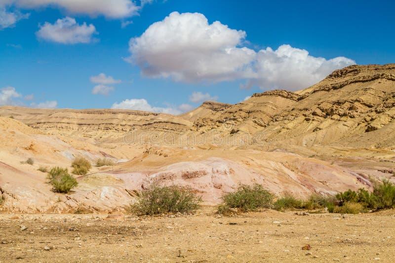 Den Negev öknen fotografering för bildbyråer