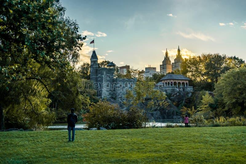 Den New York Central Park med träd för horisontsiktssolnedgången fördunklar arkivbilder