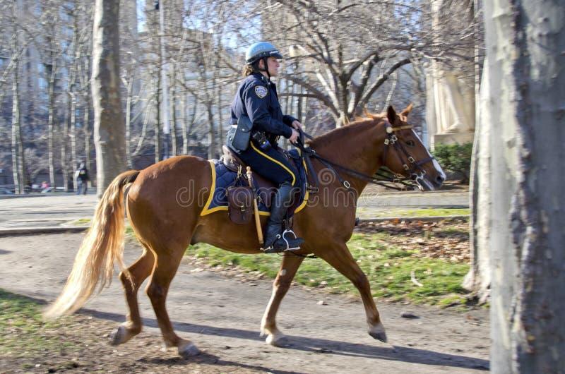 Den New York City polisen fotografering för bildbyråer