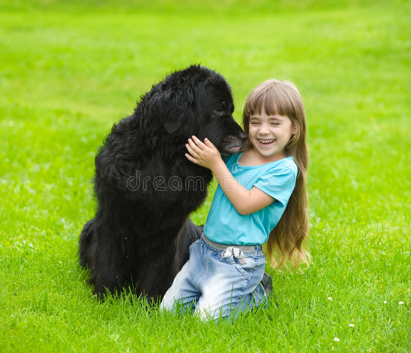 Den Newfoundland hunden kysser en flicka arkivfoton