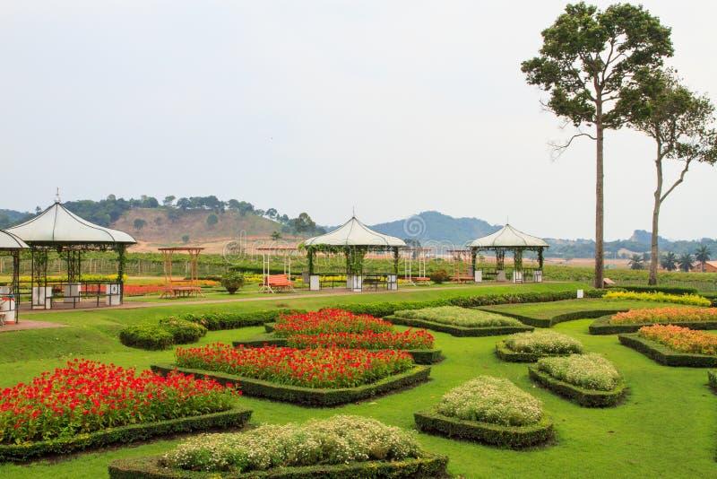Nice trädgård arkivbild