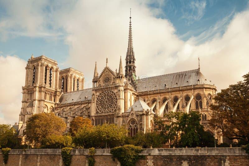 Den Notre Dame de Paris domkyrkan, tappning tonade fotoet royaltyfri foto