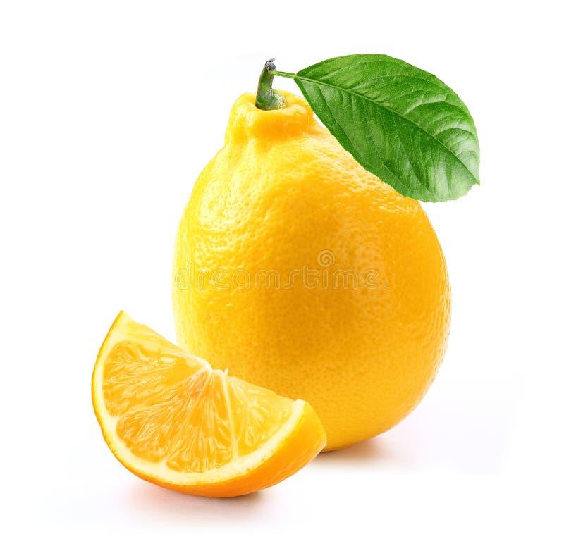 Den nya citronen med skivan och bladet isolerade vit bakgrund royaltyfri fotografi
