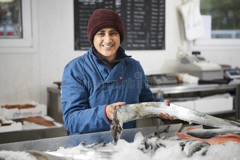 Den nya fisken och musslor presentated vid fishdealeren arkivbilder