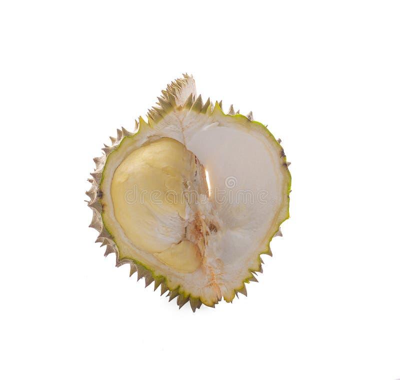 Den nya klippta durianen, som ?r konungen av frukt fr?n Thailand, isolerade p? vit bakgrund fotografering för bildbyråer