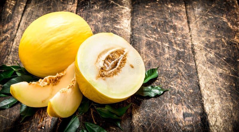 den nya melonen skivade royaltyfri bild