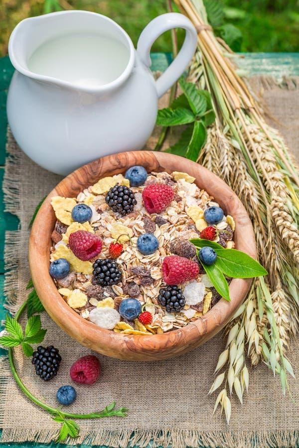 Den nya myslit med bärfrukter och mjölkar arkivfoton