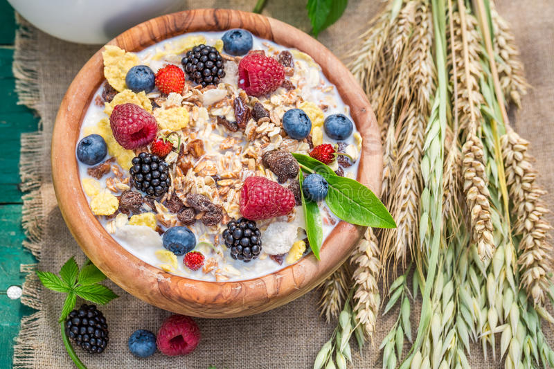 Den nya myslit med bärfrukter och mjölkar i trädgård arkivbilder