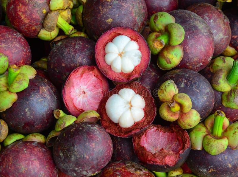 Den nya organiska mangosteenen bär frukt på marknaden arkivfoto